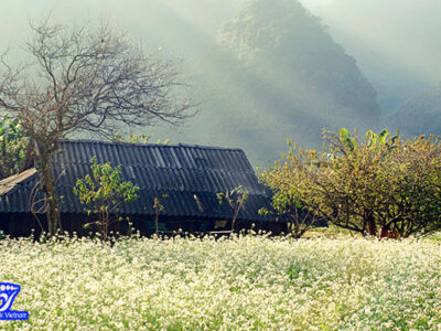 climat-nord-ouest-vietnam