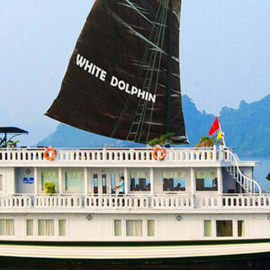 White Dolphin 3 cabines