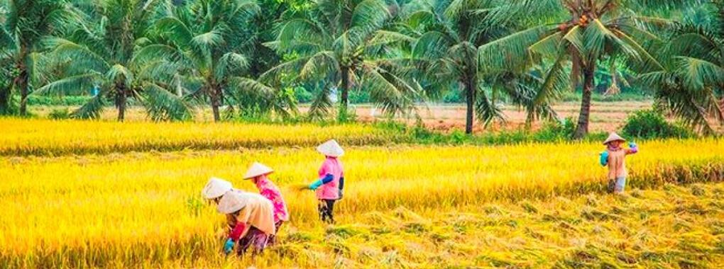 Météo du sud du Vietnam en avril