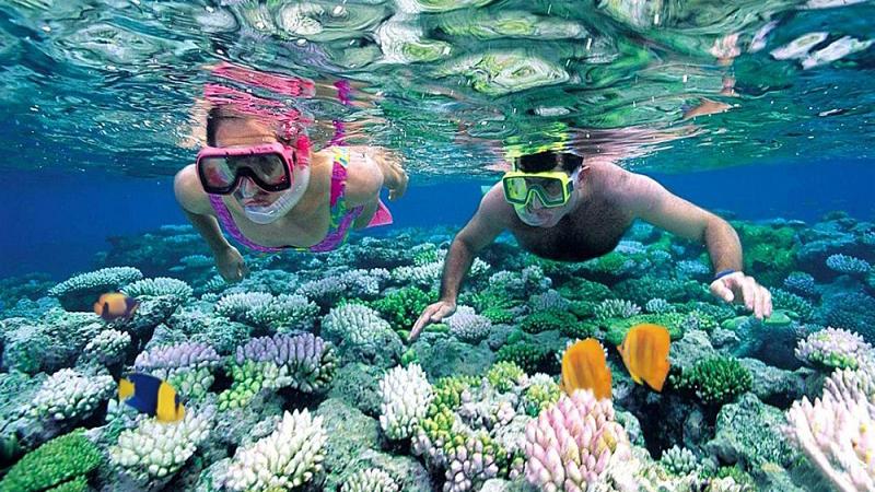 Écotourisme marin