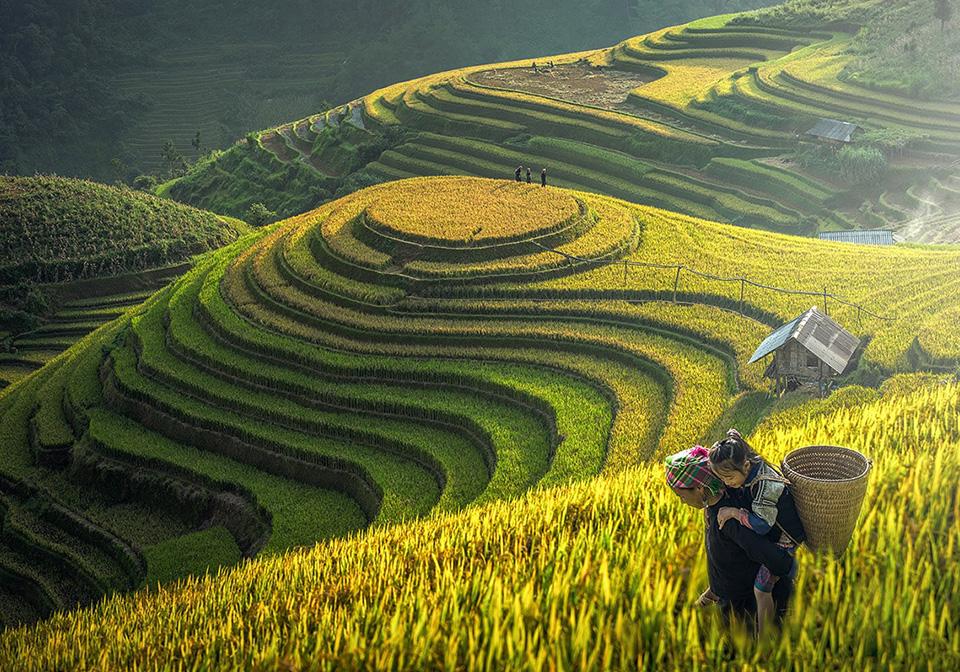 Météo Vietnam août sapa
