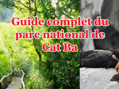 parc national de cat ba