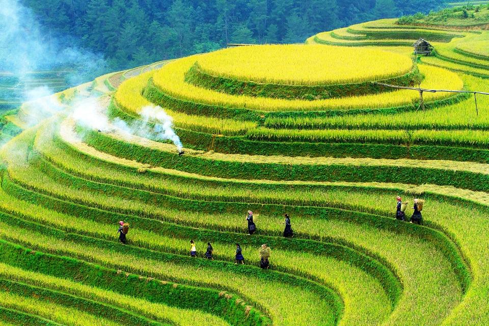 que faire au vietnam en septembre