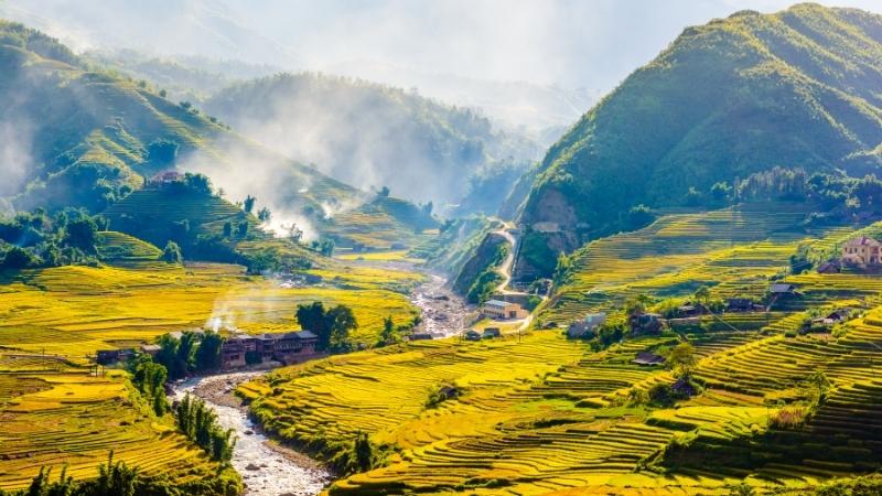 Admirer les rizières en terrasses à Sapa