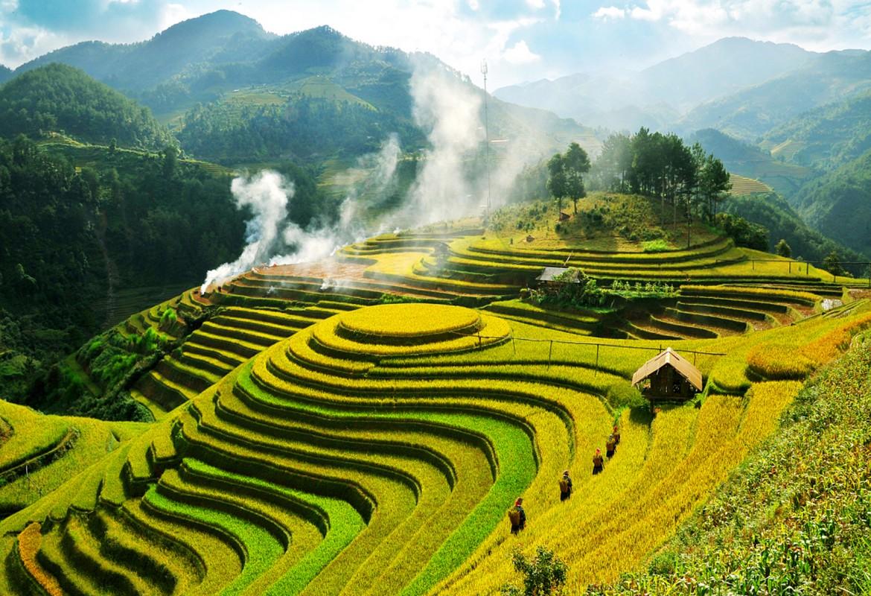 Meilleur moment pour visiter les rizières en terrasses à Sapa