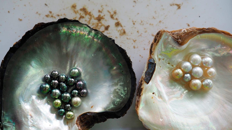 Acheter la perle de culture à l'île de Phu Quoc