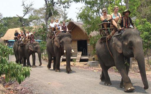 Balade à dos d'éléphant à Buon Me Thuot Vietnam