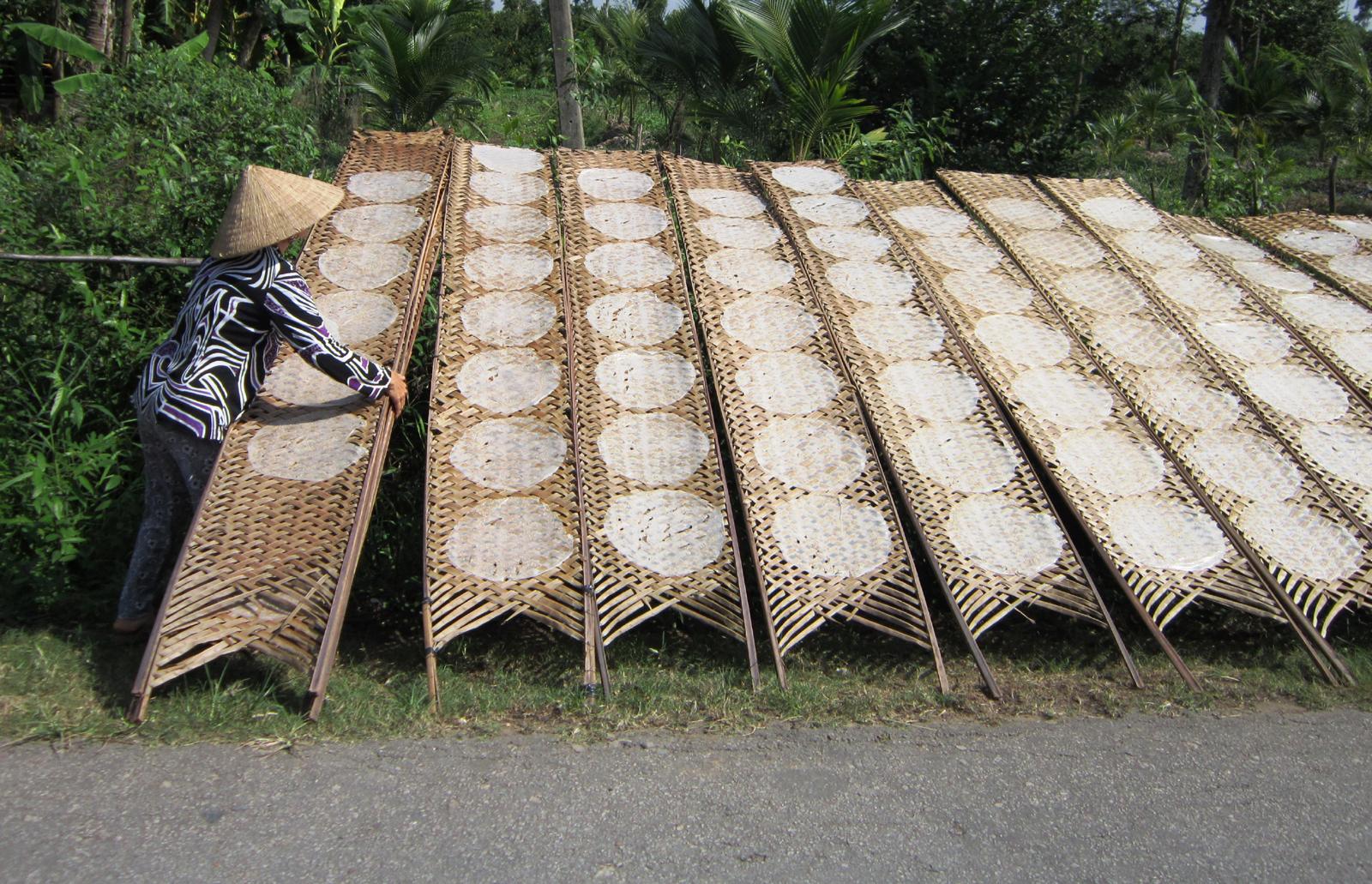 Découvrir l'usine de nouilles de riz