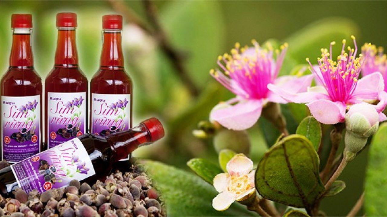 Déguster du vin Sim à Phu Quoc