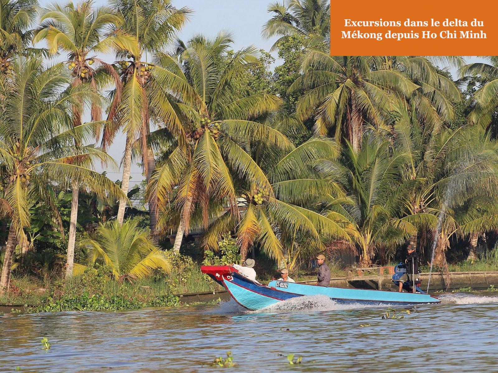 Excursions dans le delta du Mékong depuis Ho Chi Minh