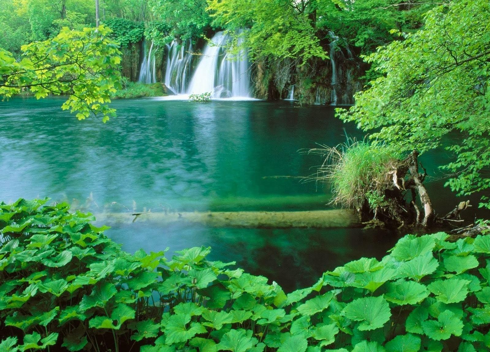 Parc national de Phu quoc