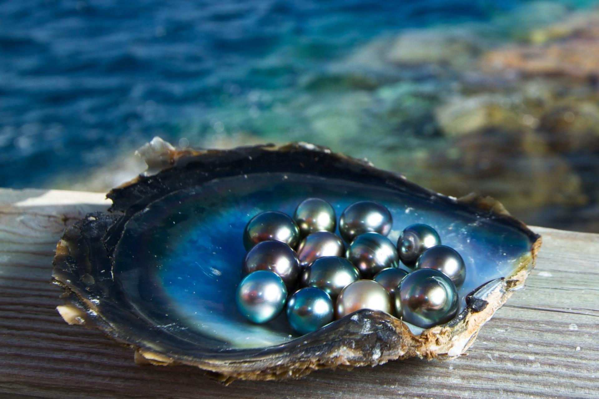 Perle de phu quoc