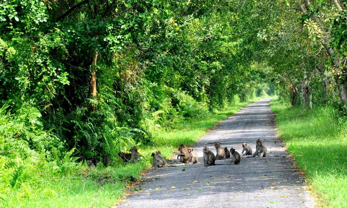 Se promener dans le parc national de Phu Quoc