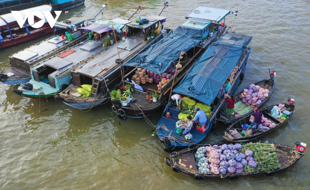 Visiter les marchés flottants et la faune sauvage de Can Tho