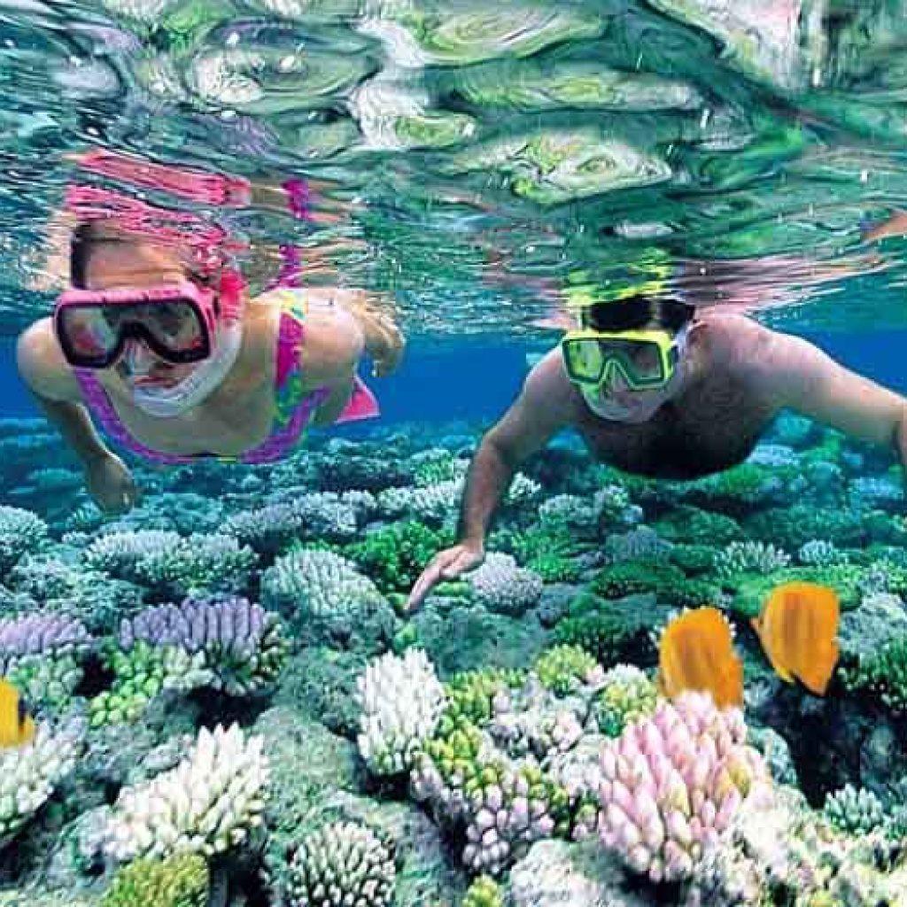 Faire du snorkeling à l'île Cham