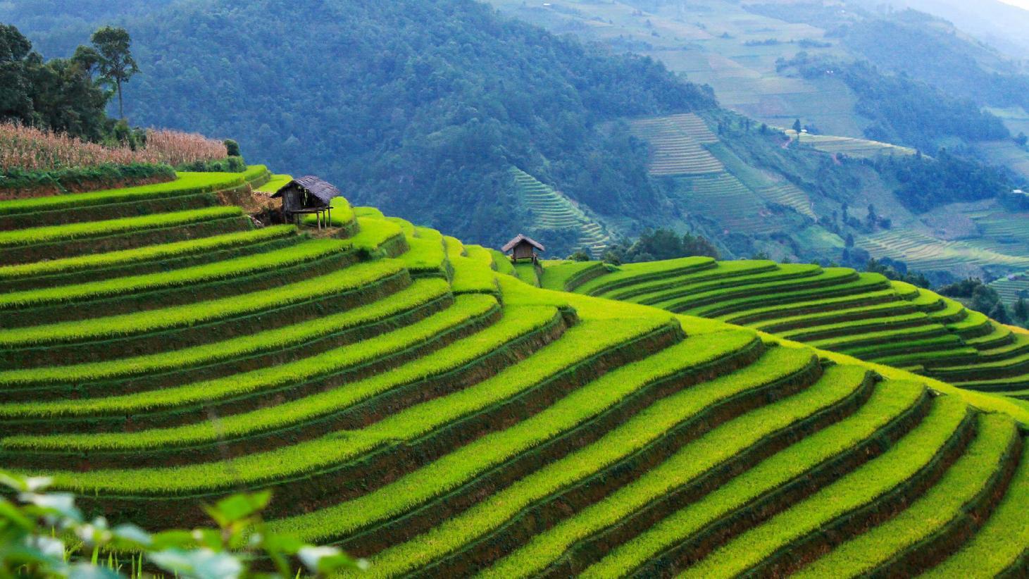 Personnalisez votre voyage au Vietnam comme vous le souhaitez