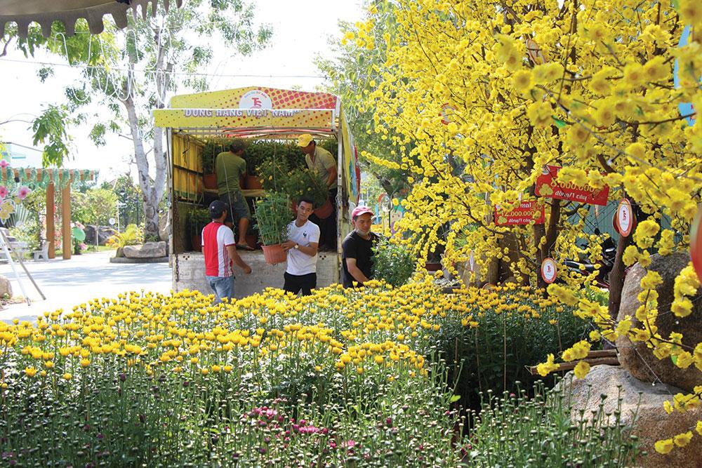 Visiter les marchés aux fleurs tet vietnam