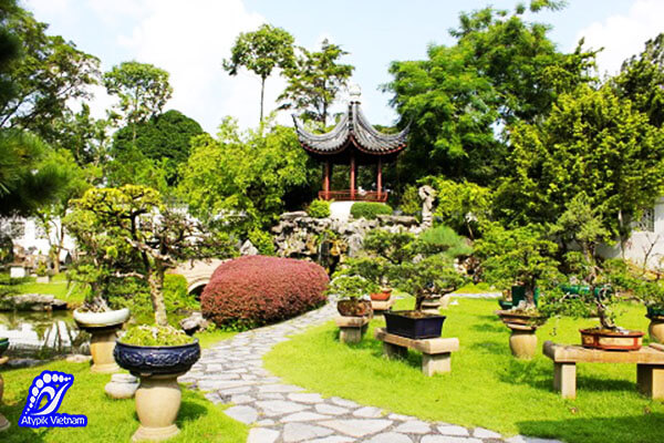 jardin-des-bonsaï-vinh-long