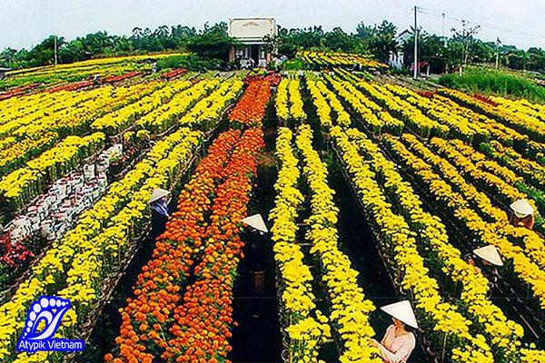 village-de-fleurs-de-sa-dec