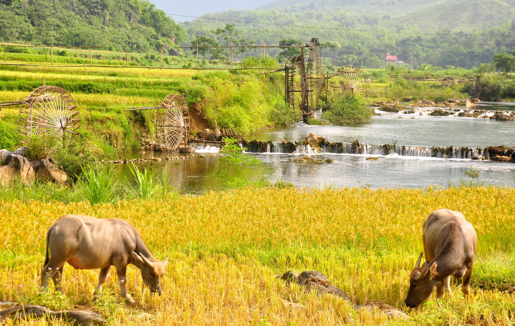 Itinéraire de voyage à Pu Luong Vietnam