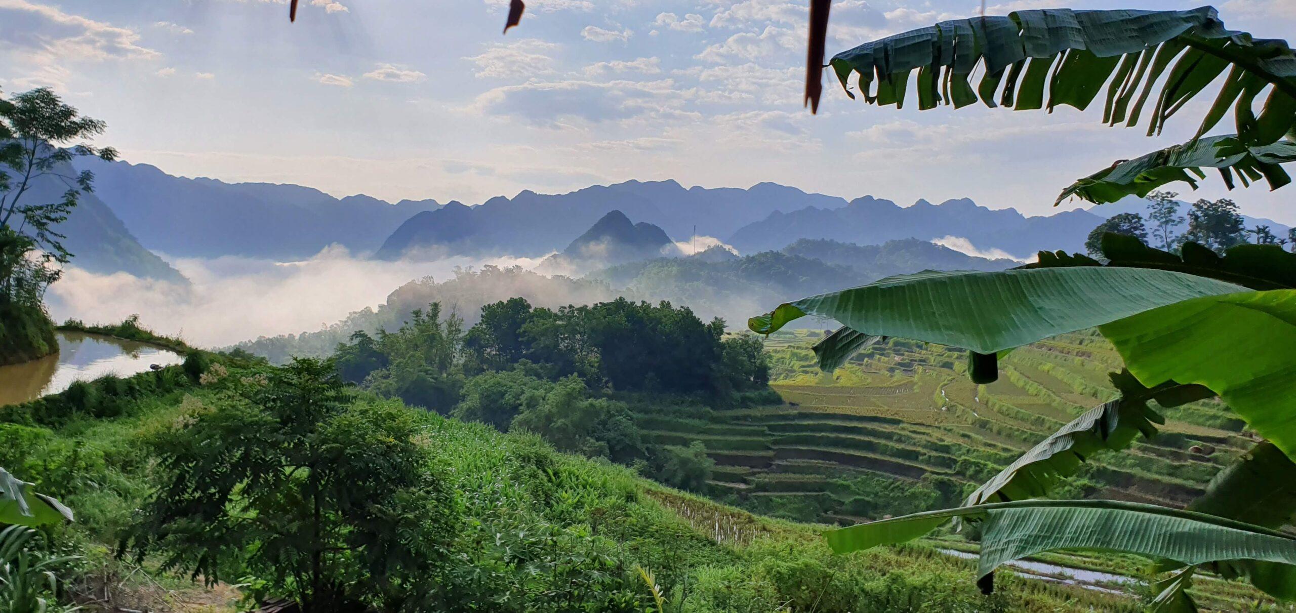 Quel est le meilleur moment pour se rendre dans la réserve naturelle de Pu Luong