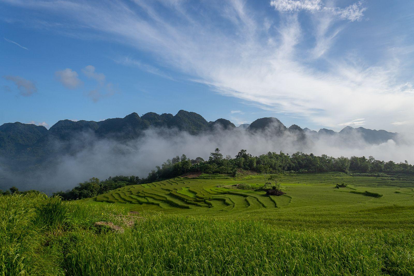 Sommet de la montagne Pu Luong