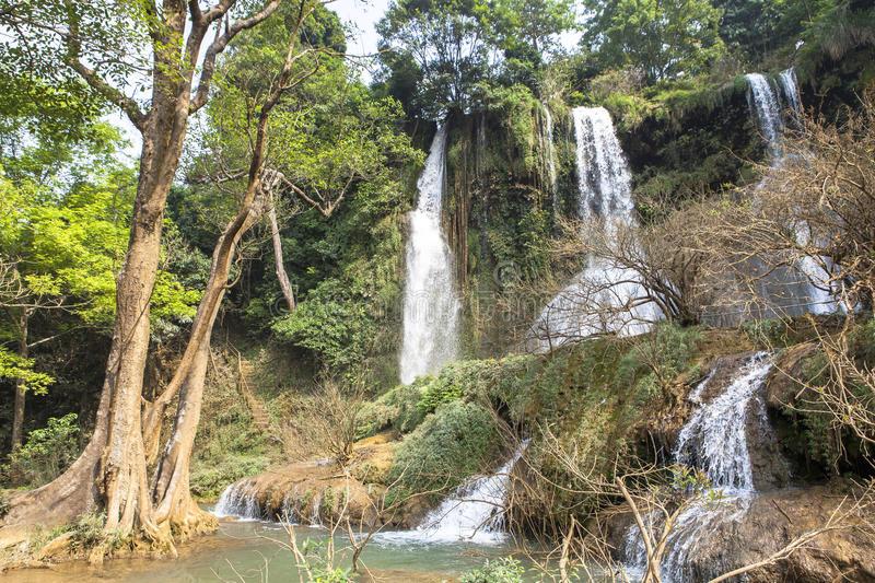 cascade de Muon